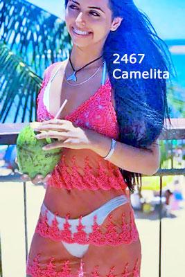 camelita